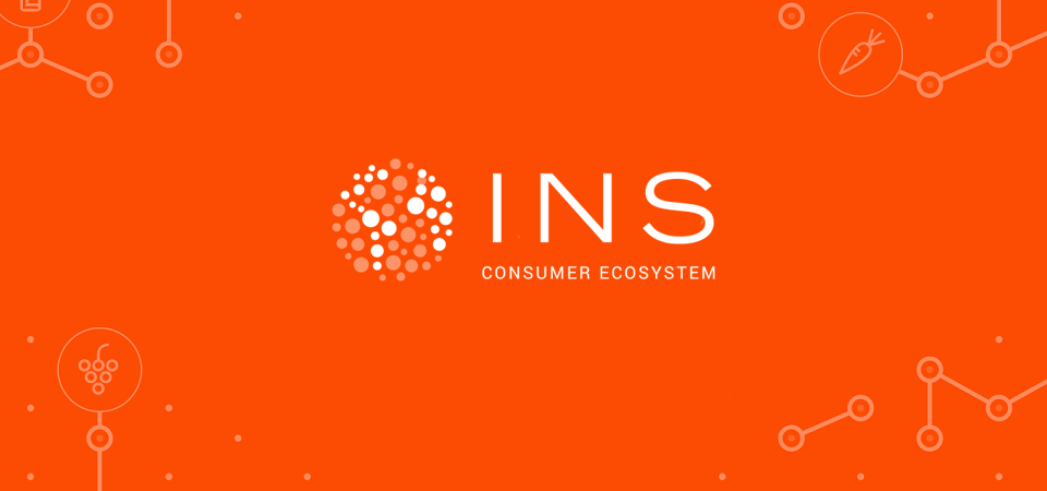 مشروع INS